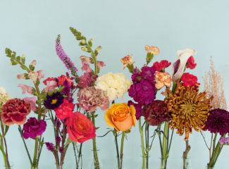 4 Colombian flowers for unique creations: Hydrangea, Alstroemerias, Chrysanthemums, Carnations