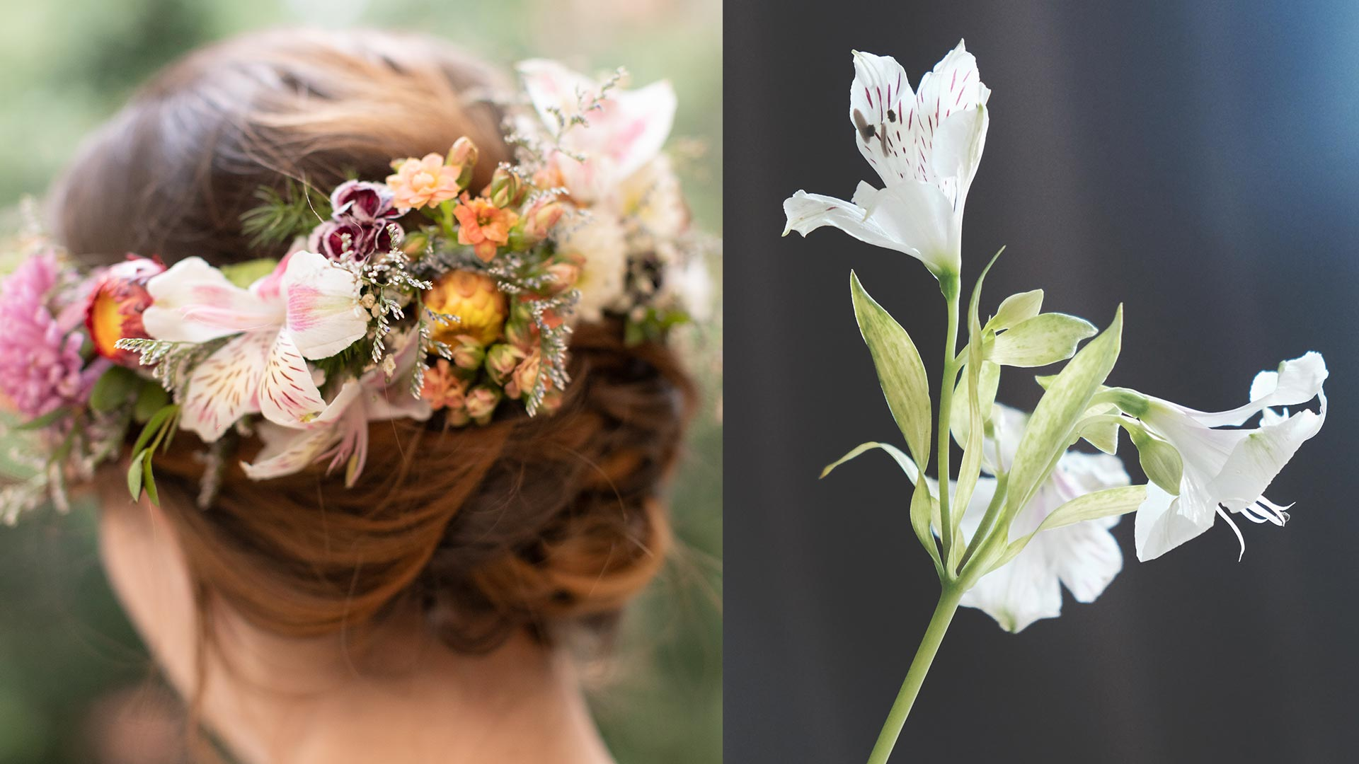 Floral headpieces and floral crowns image