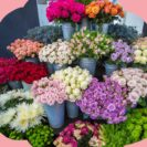 Find Colombian flower arrangements in United Kingdom